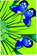Butterfly - Insect,Plant,In...