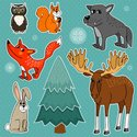 Moose,Woodland,Animal,Winte...