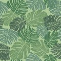Tropical Climate,Pattern,Ha...