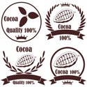 Cocoa Bean,Crop,Cacao Fruit...
