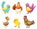 Animal,Pets,Rooster,Small,D...