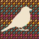 Pattern,Bird,Backgrounds,Co...