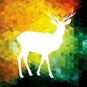 Geometric Shape,Deer,Abstr...