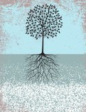Growth,Root,Tree,Dirt,Cultiva…
