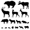 Symbol,Sign,Nature,Animals ...