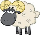 Sheep,Ram - Animal,Cartoon,...