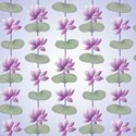 Lotus Water Lily,Backdrop,S...