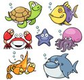 Turtle,Sea,Whale,Starfish,S...