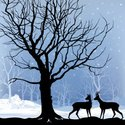Animal,Forest,Christmas,Win...