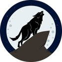 Wolf,Howling,Coyote,Silhoue...