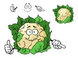 Cartoon,Vegetable,Agricult...