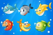 Piranha,River,Sea,resource,...