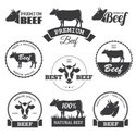 Cow,Animal Head,Beef,Cattle...