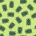 Pattern,Insect,Animal,Natur...