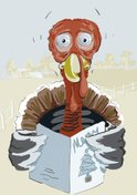 Turkey - Bird,Christmas,Humor…