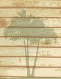 Backgrounds,Palm Tree,Wood ...