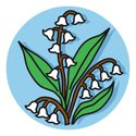 Lily-of-the-valley,Valley,L...