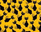 Domestic Cat,Pattern,Hallow...