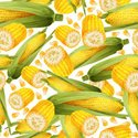 Corn,Pattern,Wrapping Paper...