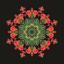 Floral Pattern,Isolated,Sin...