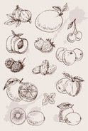 Date,Fruit,Drawing - Art Pr...