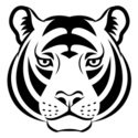 Tiger,Modern,Black And Whit...