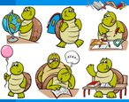 Turtle,Education,Physical G...