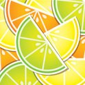 Backdrop,Seed,citric,Plant,...