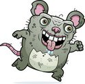 Playing,Mouse,Ugliness,Rat,...