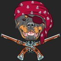 Pirate,Dog,Rottweiler,Pirat...