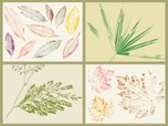 Leaf,Drawing - Activity,Vec...