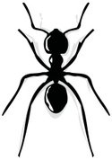 Ant,Insect,Vector,Manual Work…