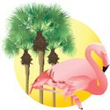 Flamingo,Palm Tree,Tropical...
