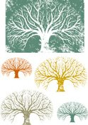 Oak Tree,Tree,Vector,Silhou...