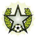 Insignia,Soccer,Laurel Wreath…