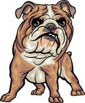 Bulldog,Dog,Clip Art,Anger,...