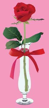 Rose on vase with ribbon