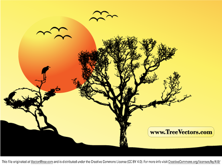 Sunset Vector Tree fond
