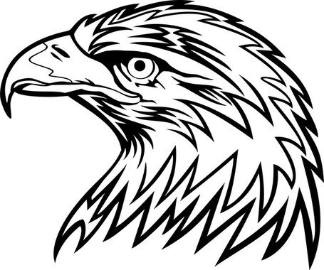 free eagle head clipart and vector graphics clipart me rh clipart me philadelphia eagle head clipart bald eagle head clipart