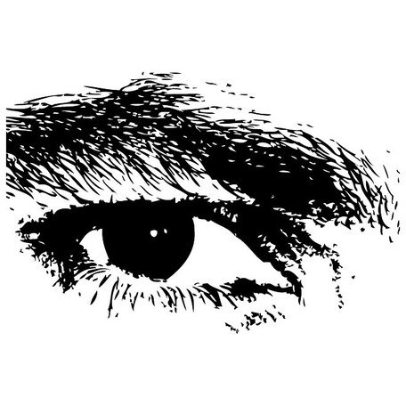 EYE VECTOR ILLUSTRATION.eps