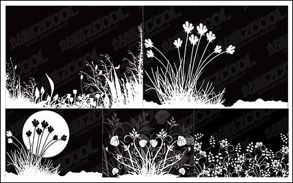 Flowers and black-and-white