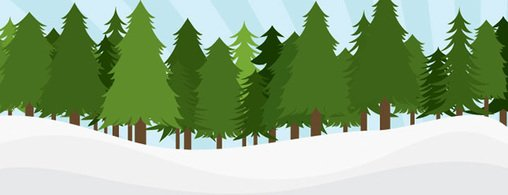 Pinetree Forest
