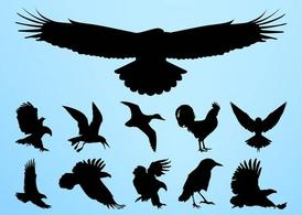 Vogels silhouetten Graphics