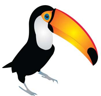 free toucan clipart and vector graphics clipart me rh clipart me toucan clipart black and white toucan sam clipart