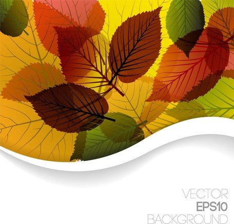 Autumn Leaves Vector 3 grafisch ontwerp