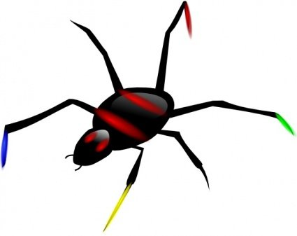 Insect Spider
