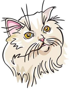Cat Face vector 3