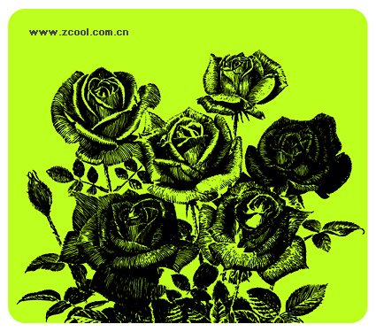 Pen drawing style roses
