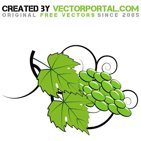 GRAPES VECTOR ART.eps