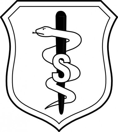 United States Air Force Biomedical Sciences Corps Badge